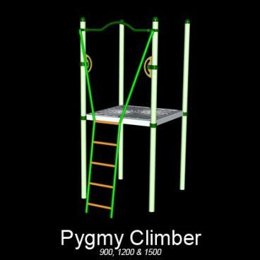 Pygmy Climber