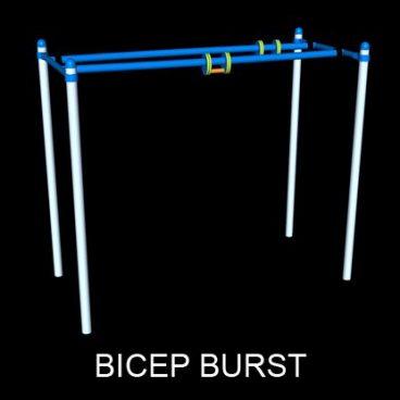 Bicep Burst Barz